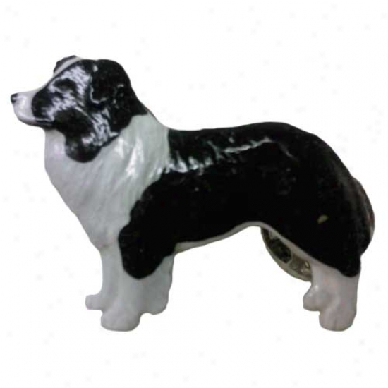 Black Anf White Edge Collie Hand Painted Pin