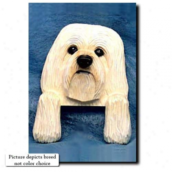 Black And Wbite Havanese Door Topper