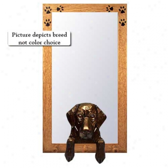 Black Dull Coated Retriever Hall Mirror With Oa kNatural Frame