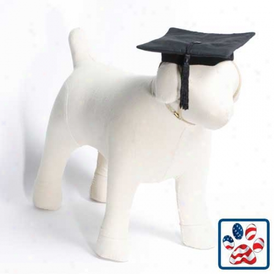 Black Graduation Cap Dog Costume Small