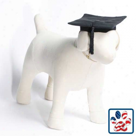 Black Graduation Cap Dog Costume  X-small