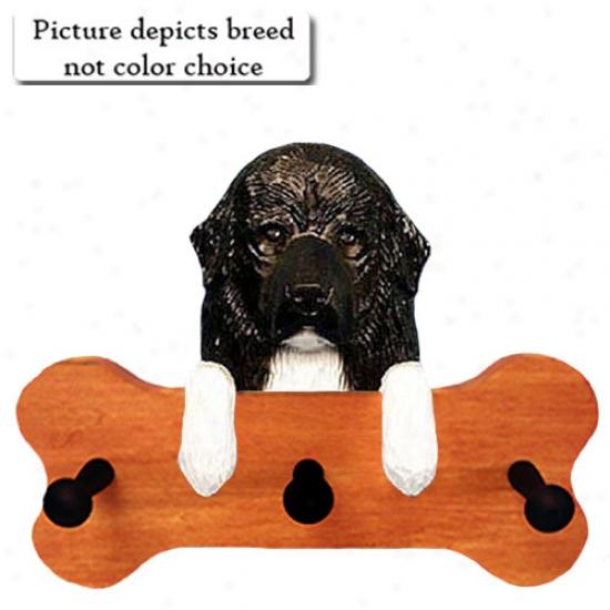 Black Newfoundland Bone Hang Up Maple Finish