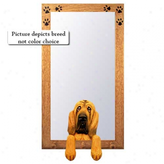 Bloodhound Hall Mirror With Basswood Pine Frame