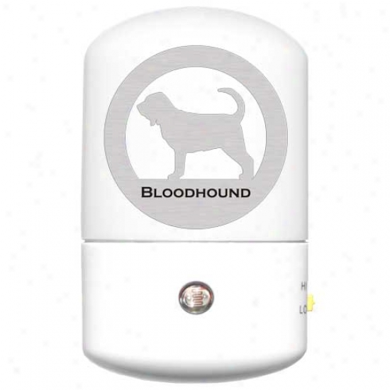 Bloodhound Led Night Lights