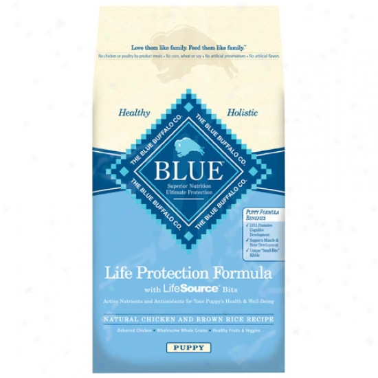 Blue Buffalo Chicken And Brown Rice Puppy Dry Food - 30lb Oversize