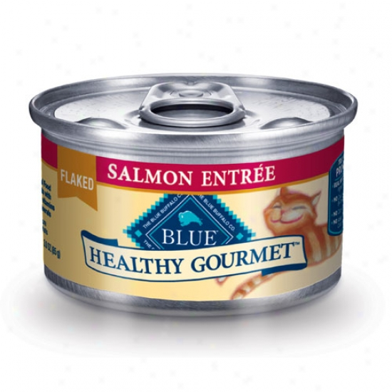 Blue Buffalo Healthy Gourmet Salmon Cat Food 3oz Covering Of 24 Cans