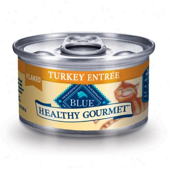 Blue Buffali Healthy Gourmet Turkey Cat Food 3oz Case Of 24 Cans