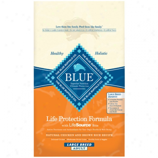 Blue Buffalo Large Breed Adult Chicken And Brown Rice Dog Food1 5lbs Oversiae