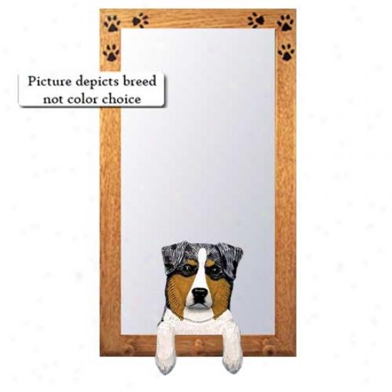 Blue Merle Australian Shepherd Hal1 Mirror With Oak Golden Frame