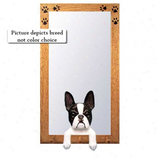 Boston Terrier Hall Mirror With Oak Golden Frame