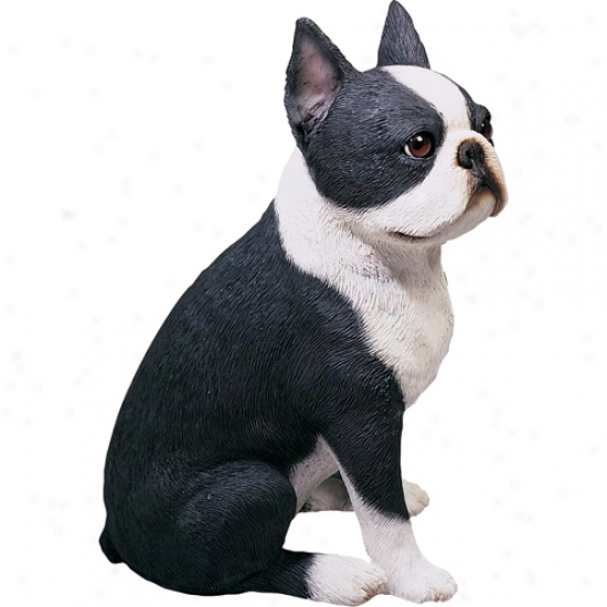 Boston Terrier (sitting) Original Size Sculpture By Sandicast