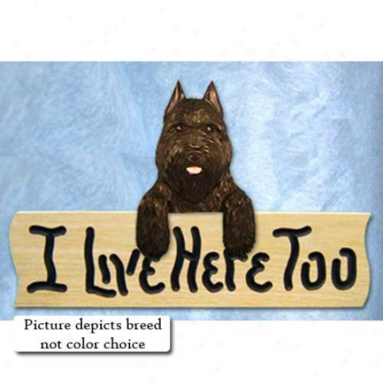 Bouvier Des Flandres I Live Hither Too Oak Finish Sign Grey