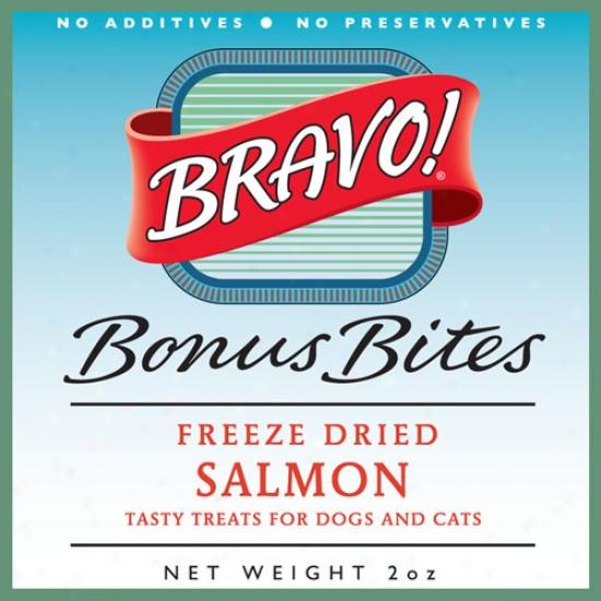 Bandit Freeze Dried Salmon 2oz