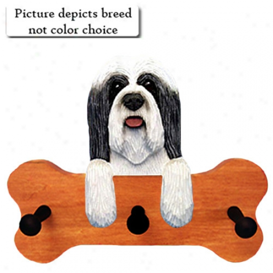 Brown And White Bearded Collie Bone Hang Up Maple Finish