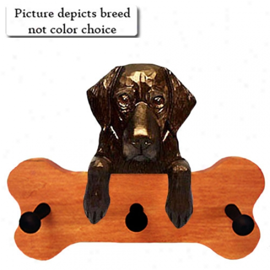 Brown Flat Coated Retriever Bone Hang Up Maple Finish