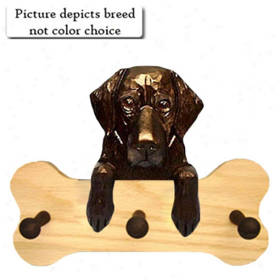 Brown Flat Coated Retriever Bone Hang Up Fool Oak
