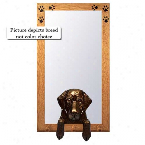 Brown Flat Coated Retriever Hall Mirror With Basswood Walnut Frame
