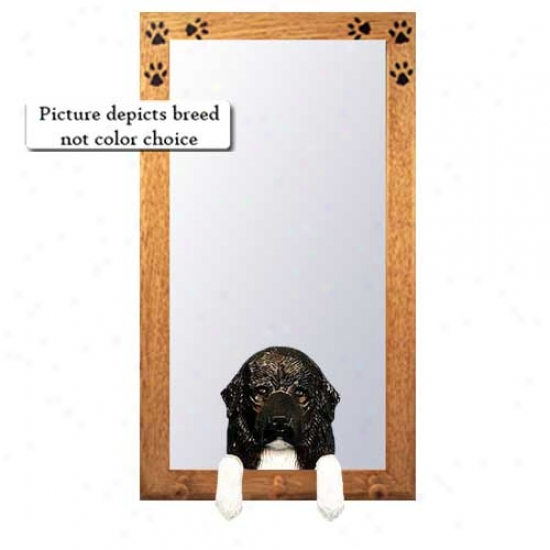 Brown Newfoundland Hall Mirror With Oak Golden Frame