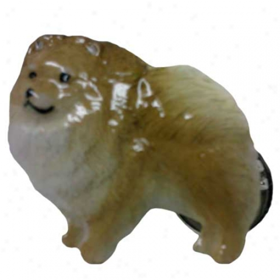 Buff Pomeranian Hand Painted Pin