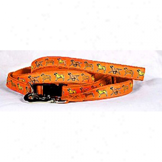 Bullmastiff - Oranfe Collar And Head Set