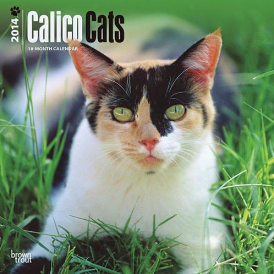 Calico Cats 2014 Calendar