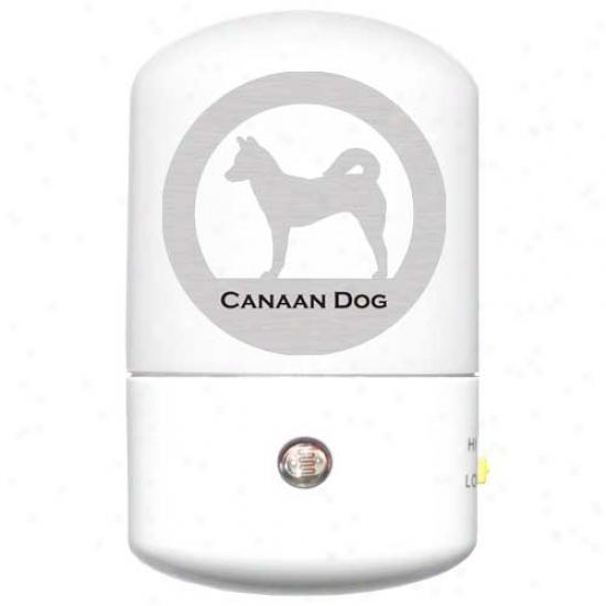 Canaan Dog Led Night Light