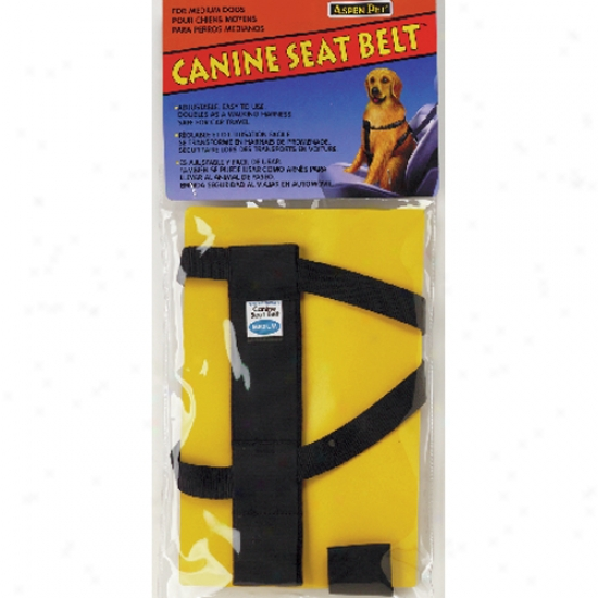 Canine Seat Belt X-large (110lbs-150lbs)