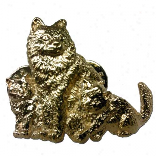 Cat And Kittens (longhaired) Gold Plated Pin