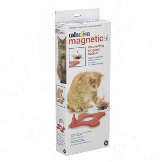 Cataction Magneticat Cat Toy