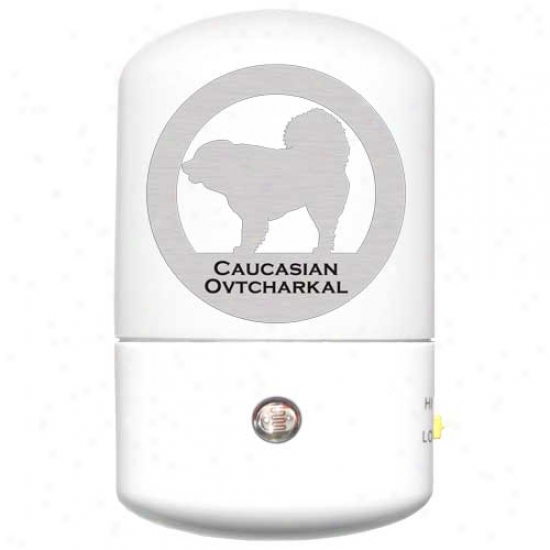 Caucasian Mountain Dog Led Night Light