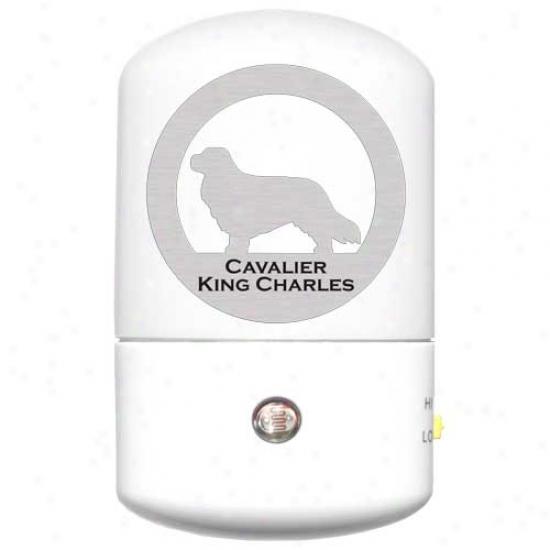 Cavalier King Charles Spanie1 Led Night Light