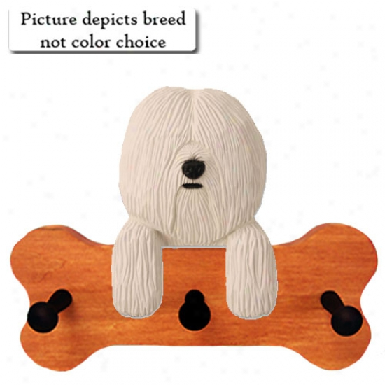 Champagne Coton De Tulear Bone Hang Up Maple Finish