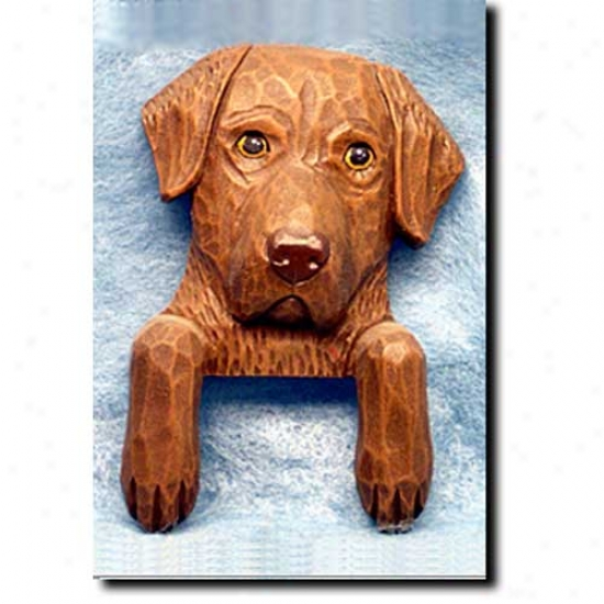Chesapeake Bark at Retriever Door Topper