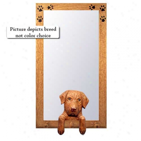 Chesapeake Bay Retriever Hall Mirror With Basswood Walnut Frame