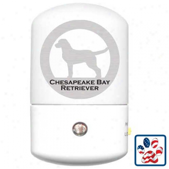 Chesapeake Bay Retriever Led Night Light