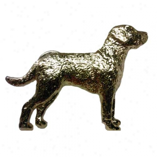 Chesapeake Bay Retriever Pin 24k Gold Plated