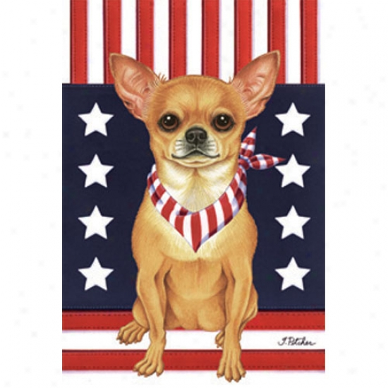 Chihuahuz Patriotic Breed Flag