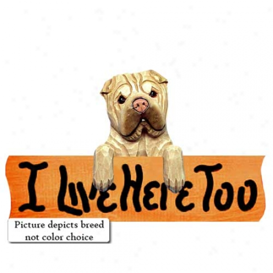 Chinese Shar-pei I Live Here Too Maple Finish Sign Red Fawn