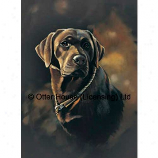 Chocolate Labrador Retriever Flag