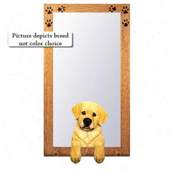 Chocolate Youth Labrador Retriever Halp Mirror With Oak Golden Frame