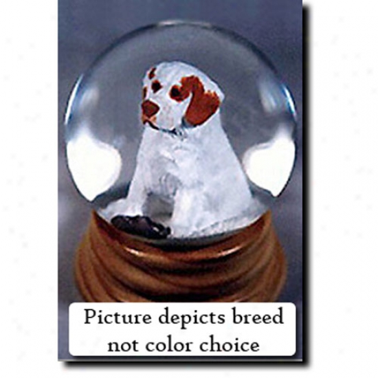 Clumber Spaniel (lemon) Musical Snow Globe
