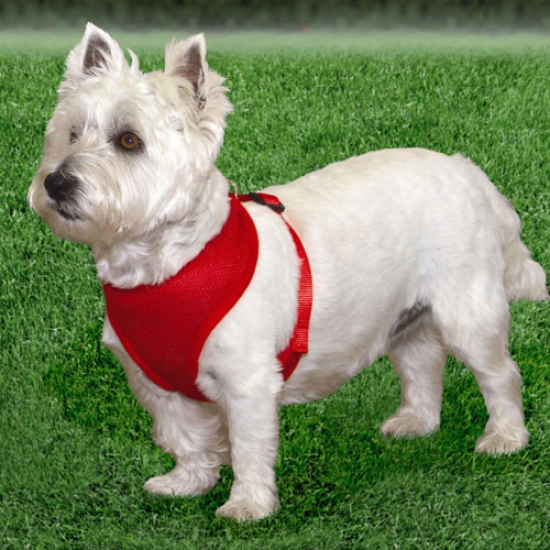 Comfort Soft Harness 3/4inch Red For Dogs 11-18bls