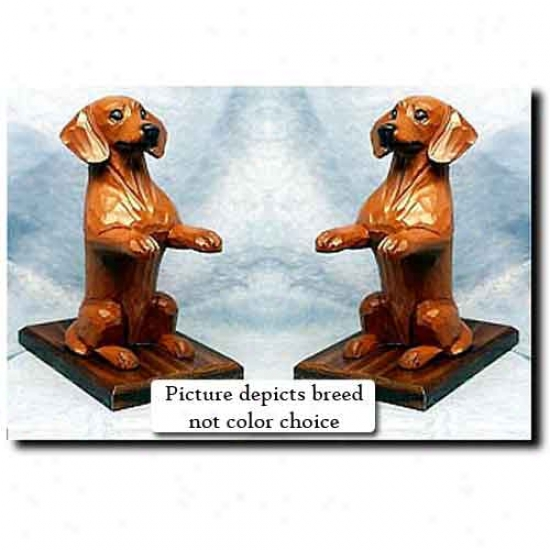 Dachshund Bookends Brown