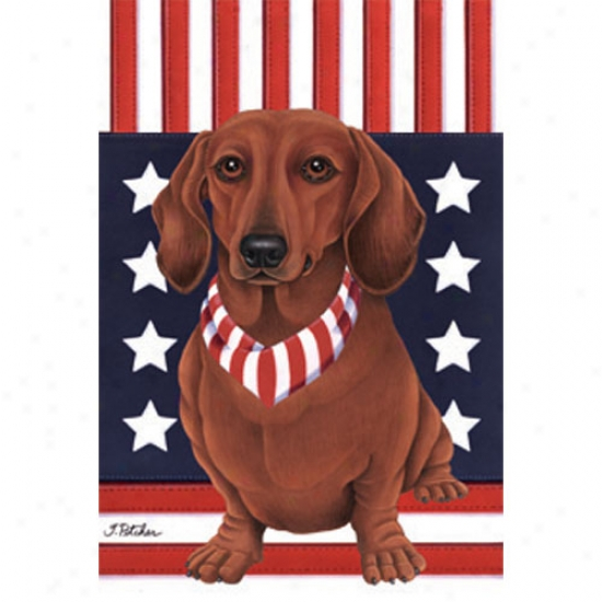 Dachshund (red) Patriotic Breed Flag