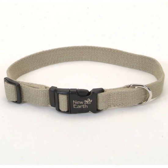 Earth Soy Dog Collar 1inch X 18-26inch Olive