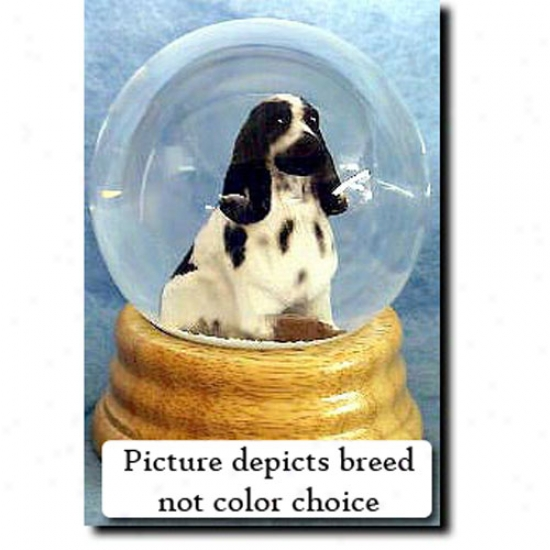 English Cocker Spaniel (black And Tan) Musica Snow Globe