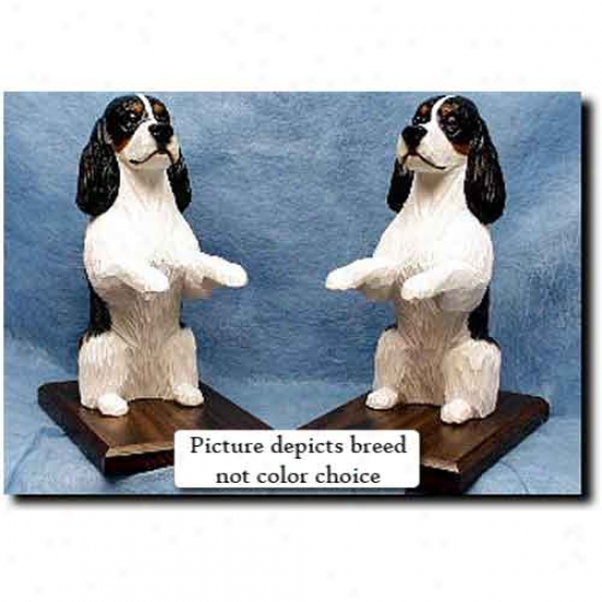 English Springer Spaniel Bookends Liver