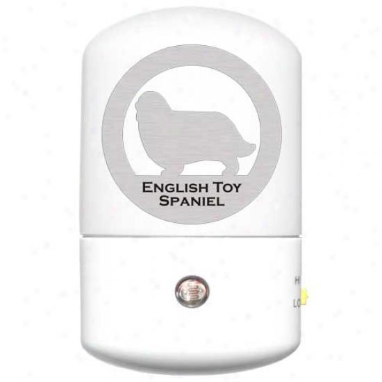 English Toy Spaniel Led Night Light
