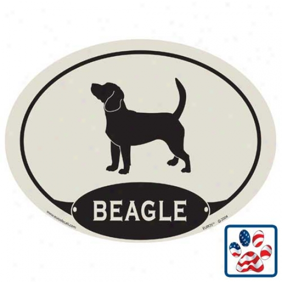 European Title Beagle Car Magnet