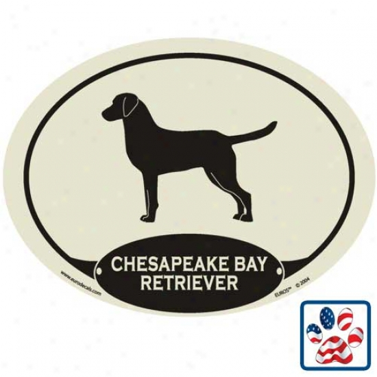 European Style Chesapeake Bay Retriever Auto Decal